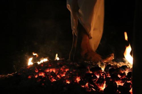 Fire activity